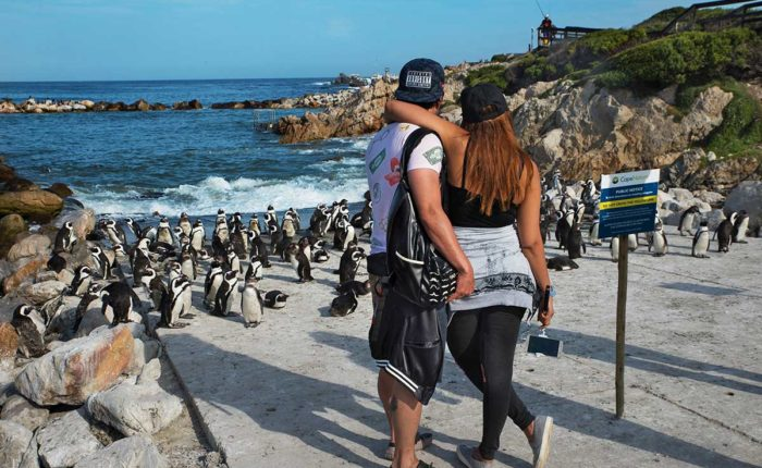 6 Fun Facets About South Africa Credit South African Tourism