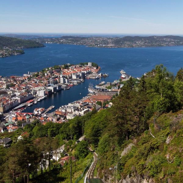 Bergen; Client Andrew Knott