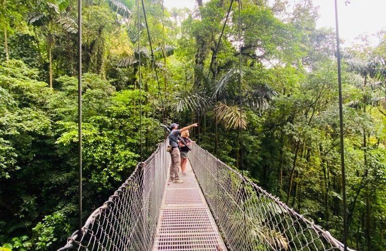 Costarica Bridge