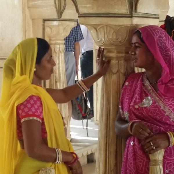 Ds Jaipur Web Ready