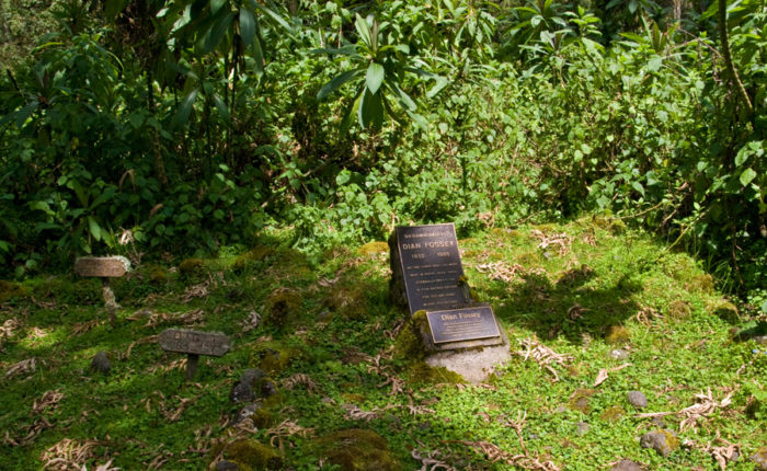 Dian Fossey Grave | Photo: Dave Richards
