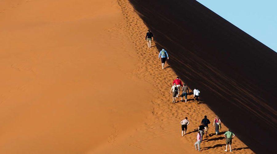 Dune 45, Namib Naukluft Park, Namib Desert