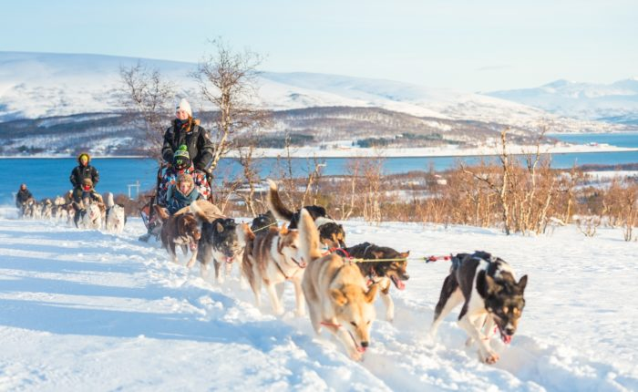 Dogsledding Tromso Villmarkssenter Feb28 9698 Web Ready