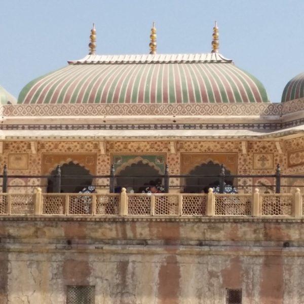 Ds Jaipur I Web Ready