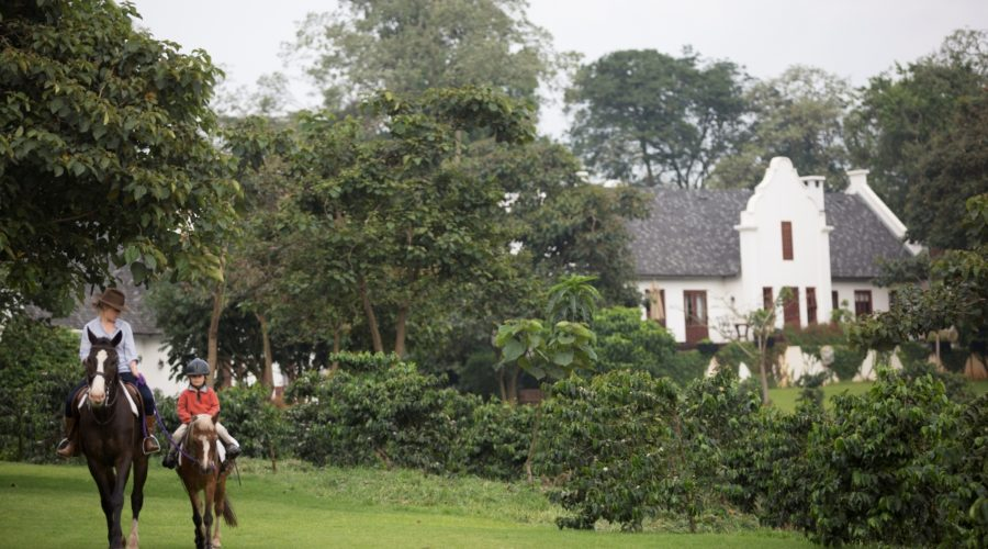 Elewana The Manor At Ngorongoro
