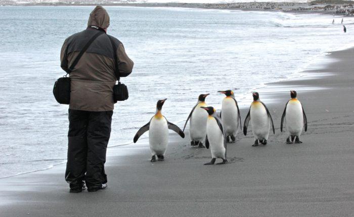 Photo: Polar Latitudes