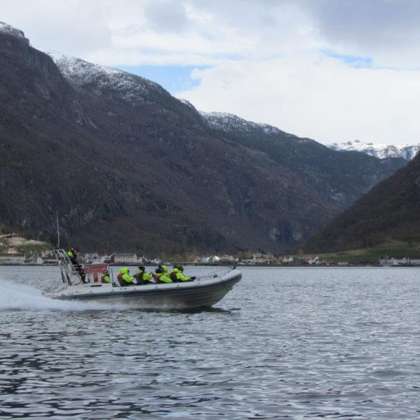 Fjord Safari Betina