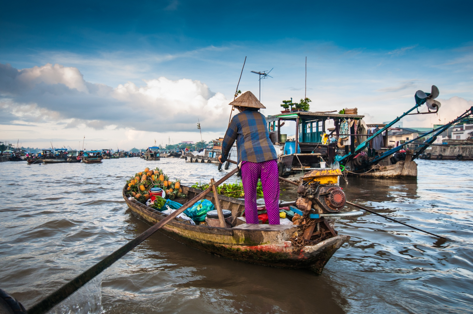 Image result for mekong delta vietnam