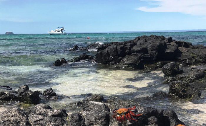 Galapagos Lm 2