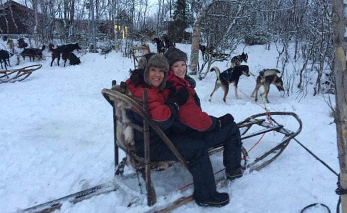 Dog sledding, northern Norway