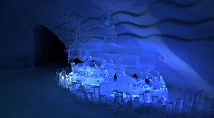 Ice Reindeer, Snowhotel Kirkenes 149a42 C9b1b426898c43a9b98fbbd0db2c3a0c Mv2 D 4288 2848 S 4 2 Web Ready