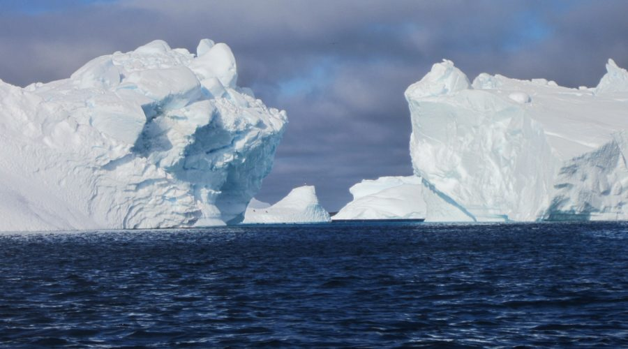 Icebergs 2 Web Ready