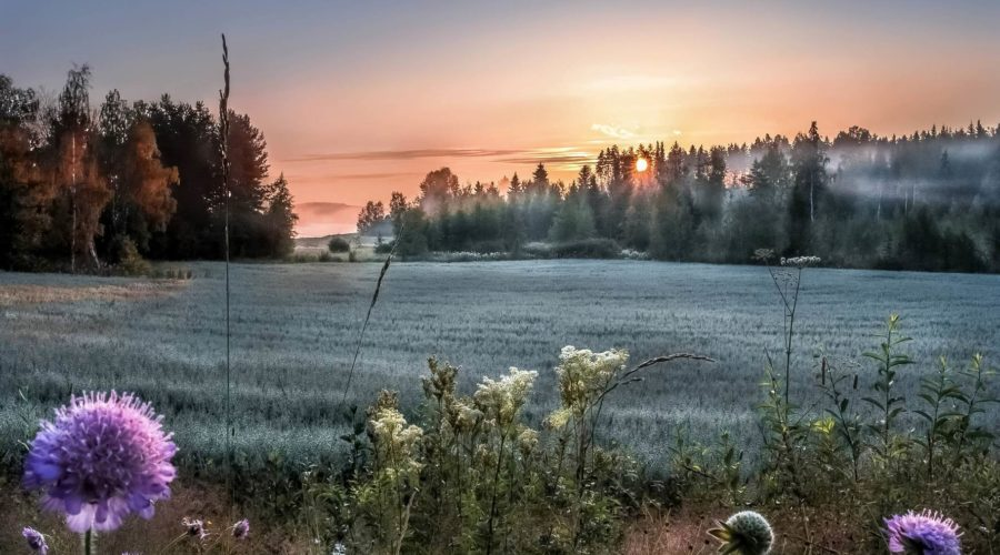 Photo: Visitfinland.fi