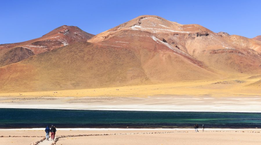 Lagunas Altiplanicas San Pedro De Atacama Web Ready