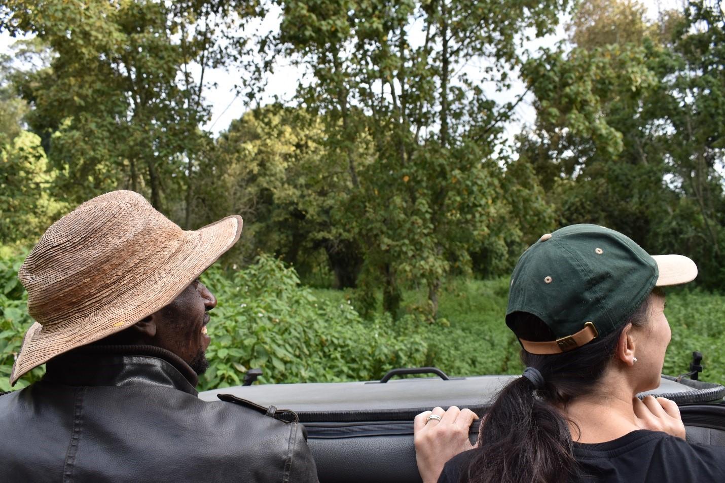 Mau Eburu Forest Drive