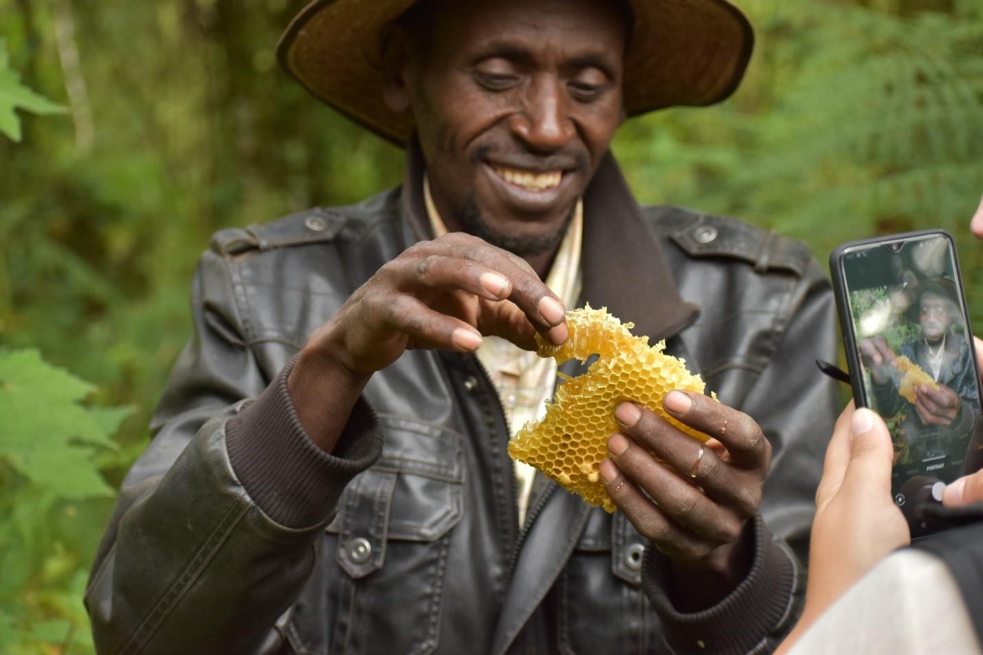 Mau Eburu Forest Honeycomb