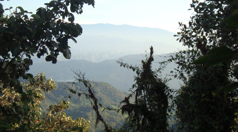Oe Photos Cloudforest Lodge To Lodge 1 Web Ready