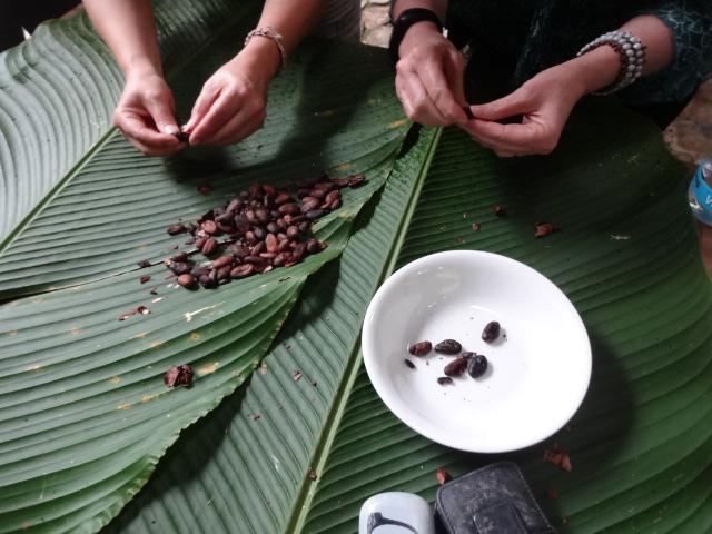Oe Photos Maquipucuna Chocolate Workshop Web Ready