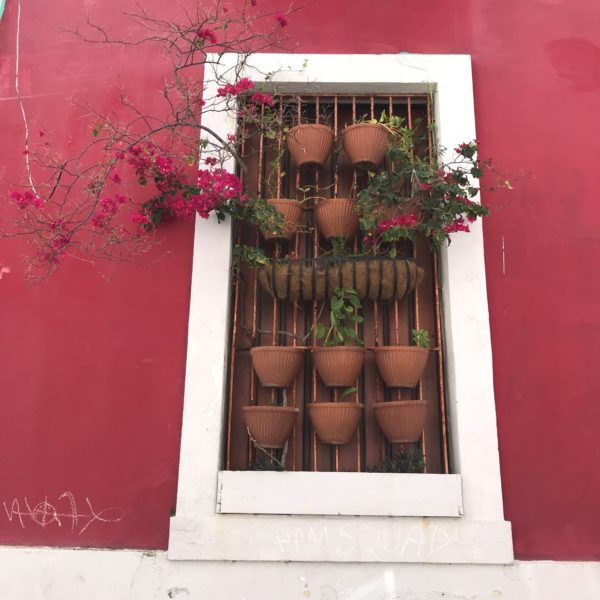 Old San Juan Window Web Ready