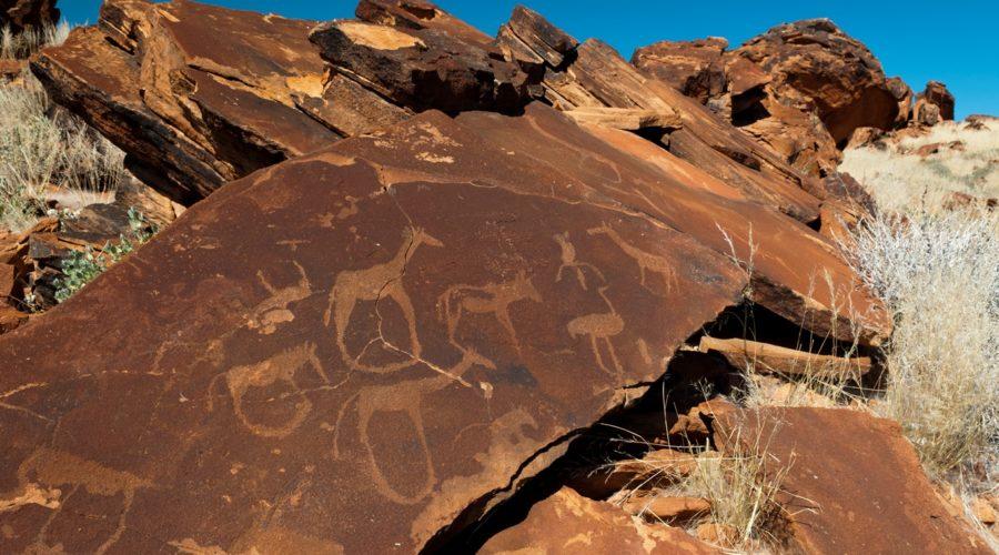 Rock engravings in Damaraland, Namibia