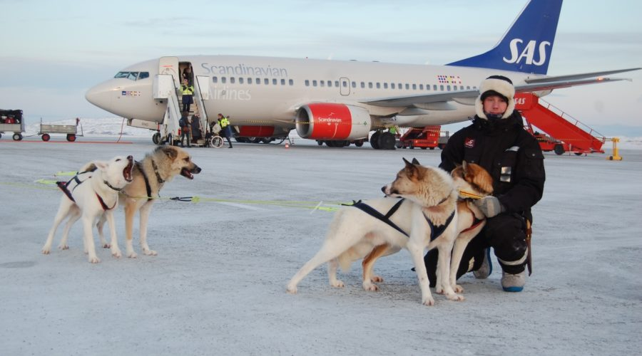 Sas And Huskey Transfer, Snowhotel Kirkenes 149a42 2828d2be65994de69074ceaf62720f39 Mv2 D 3008 2000 S 2 Web Ready