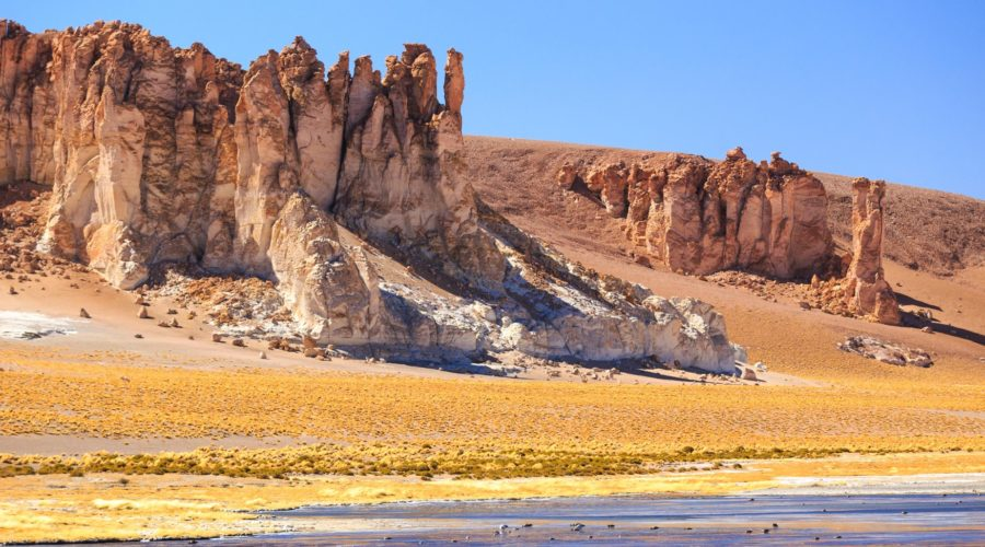 Salar De Tara San Pedro De Atacama Web Ready