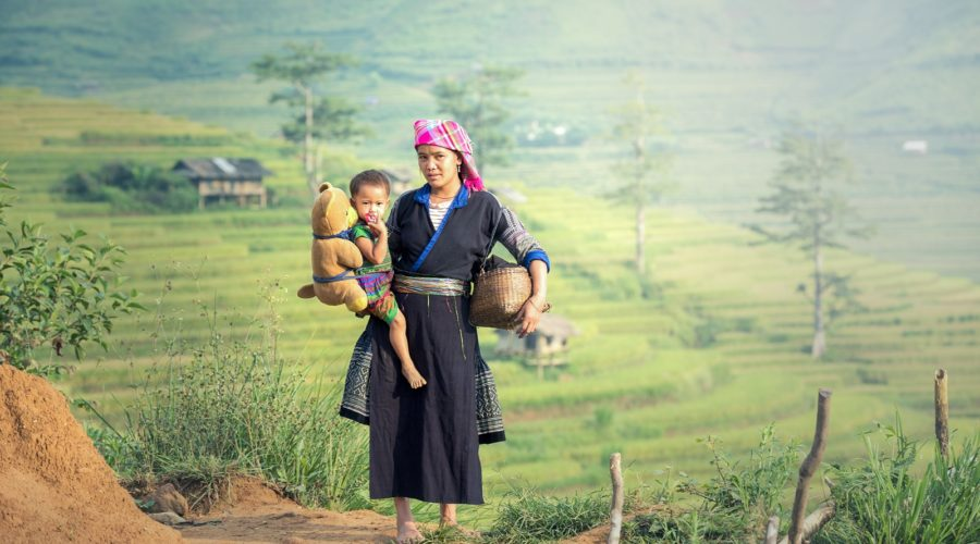 Sapa Woman With Child At Rice Terraces