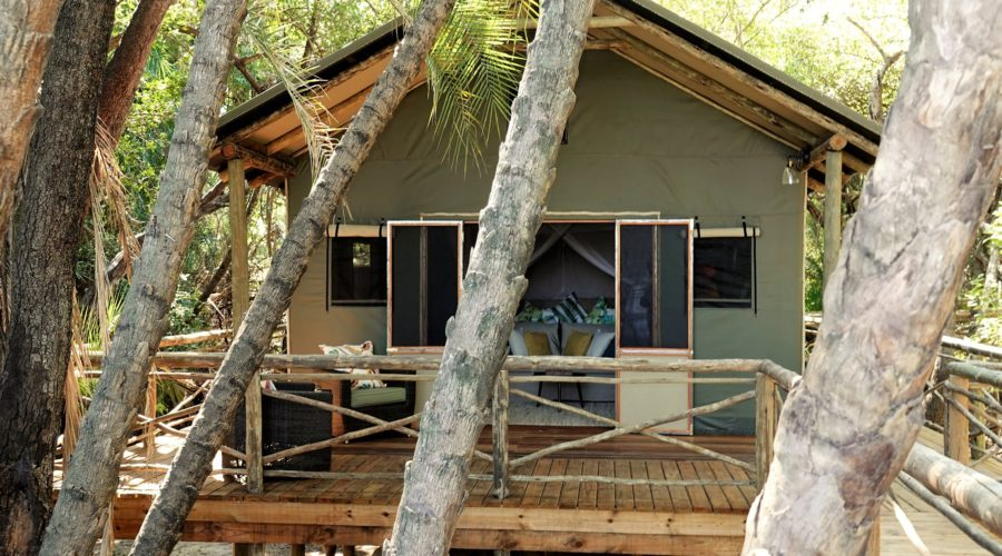 Setari Camp Tent