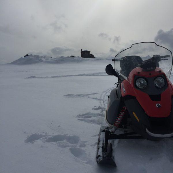 Snowmobile And Sun, Andrea Berkeland Img 4082 Web Ready