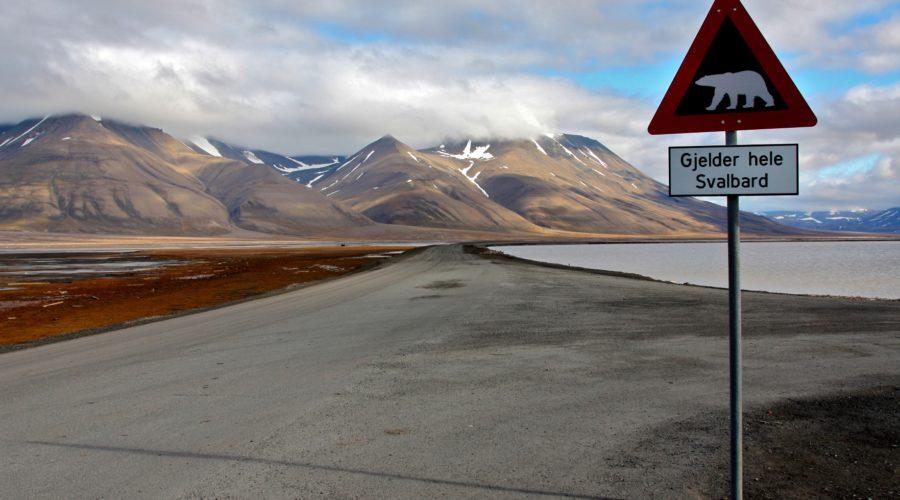 Spitsbergen, 5 13 August, 2010