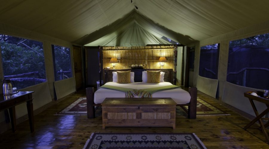 Tubu Tree Camp Tent | Photo: Dana Allen