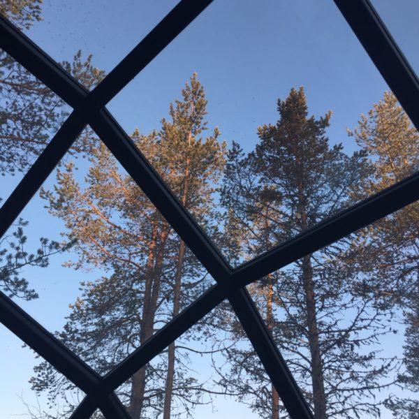 View Through Glass Igloo Andrea Berkeland Img 4114 Web Ready
