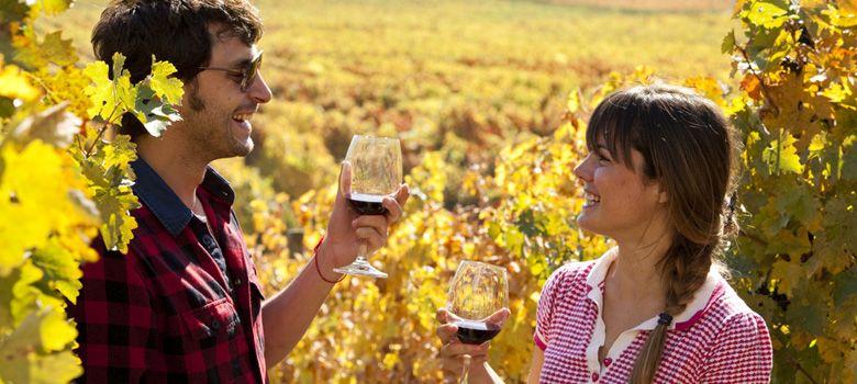 Vinos Colchagua