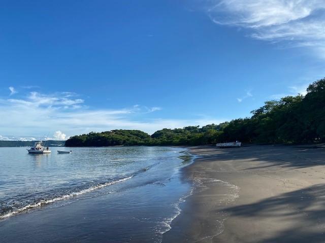 Beach At Mangroove