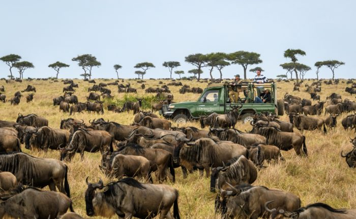 Governors Camp During Great Migration