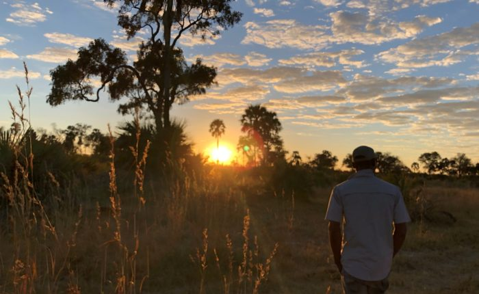 Bush Walk in Okavango Delta, Botswana