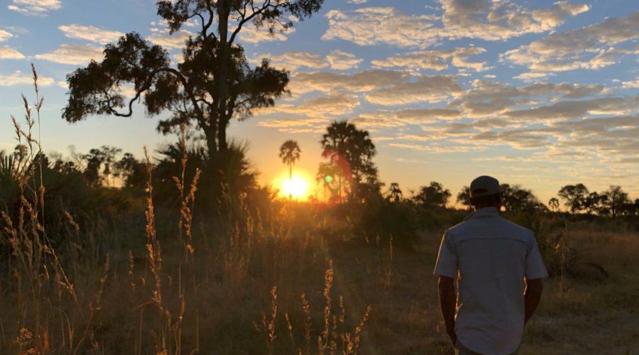 Bush Walk in Okavango Delta, Botswana