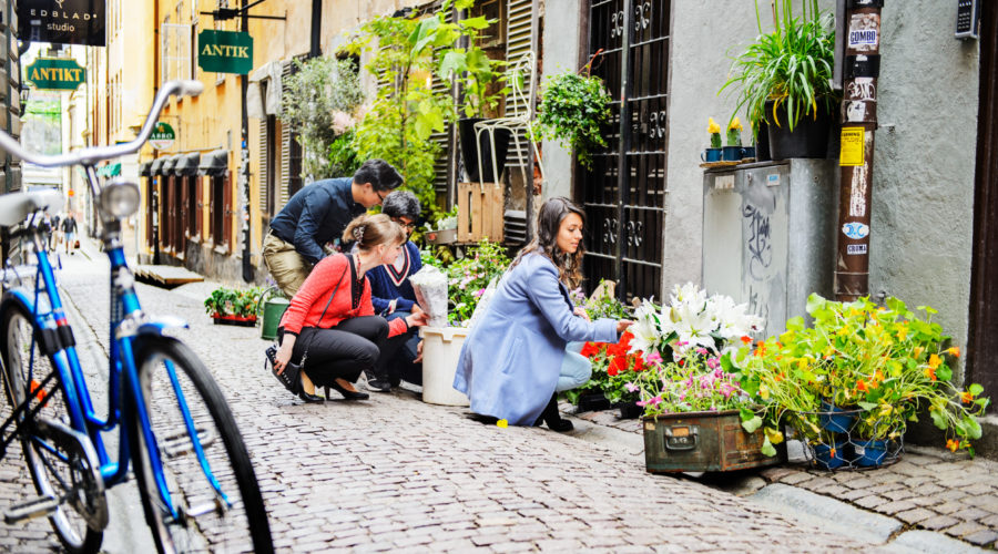 Simon Paulin Flower Shop In Old Town 4920