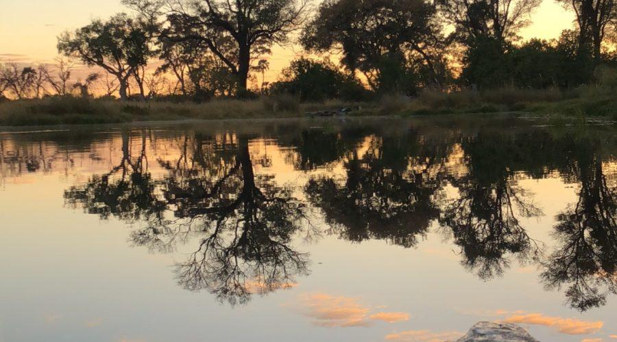 Sunrise Mokoro Ride, Okavango Delta, Botswana