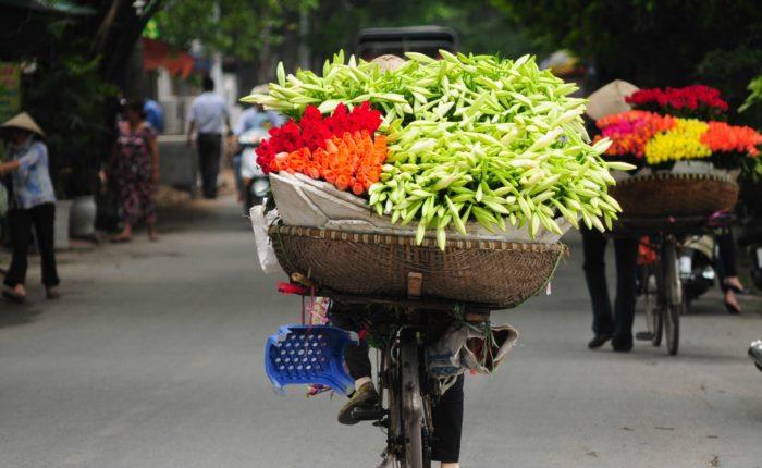 Vendor On Bike